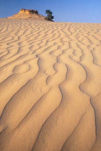 Zand patronen op het Kootwijkerzand