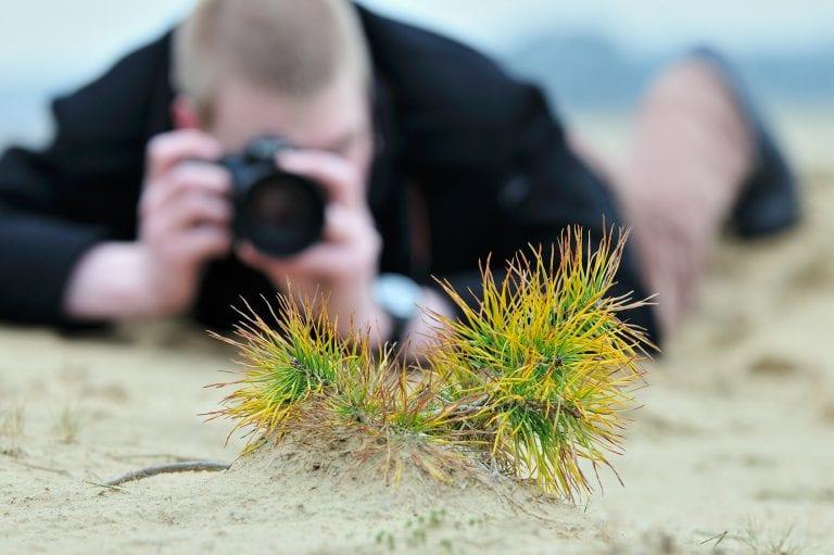 Een deelnemer aan een workshop natuurfotografie op het Kootwijkerzand fotografeert een jonge vliegden.
