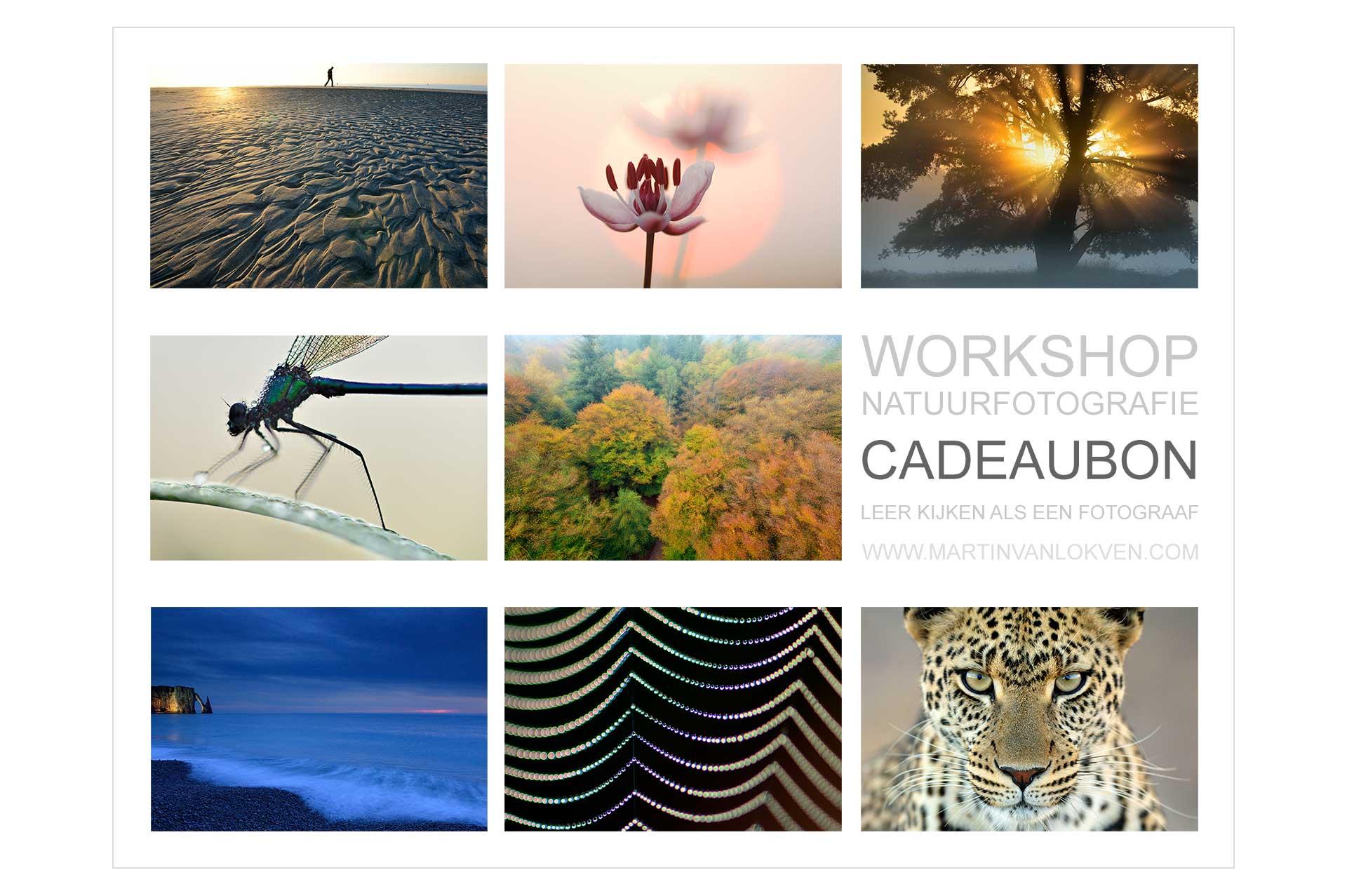 Workshop Natuurfotografie Cadeaubon